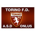 Torino FC riconosce il Torino for disable calcio disabili Magma Agenzia Marketing Media Siti Web